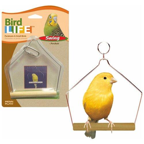 Игрушка для птиц КАЧЕЛИ ДЛЯ ПТИЦ