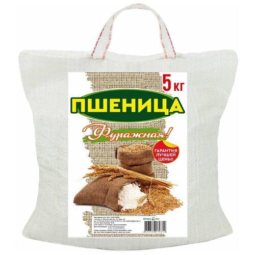 Пшеница фуражная для сельскохозяйственных животных и птиц (зерно) 5 кг.