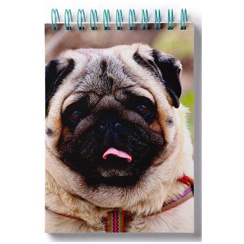 Блокнот для зарисовок, скетчбук Пазл магнитный мопс, 3 собаки