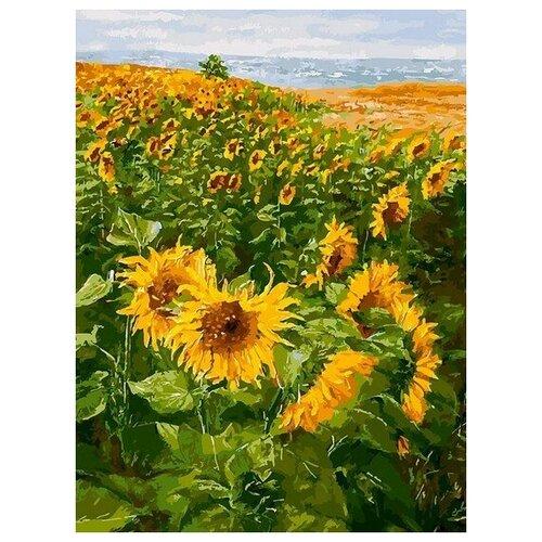 Купить Картина по номерам Солнечные братья, 30x40 см. Белоснежка, Картины по номерам и контурам
