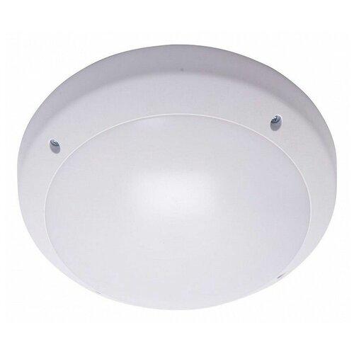 Настенно-потолочные светильники Feron 41364