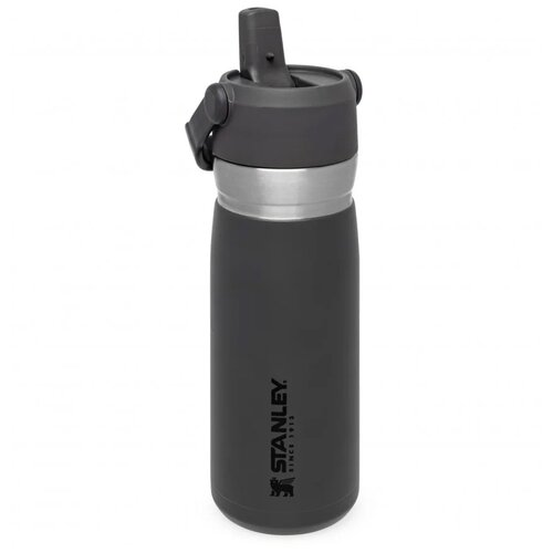 Термобутылка 0.65л STANLEY GO IceFlow Flip Straw - Серая (10-09697-008)