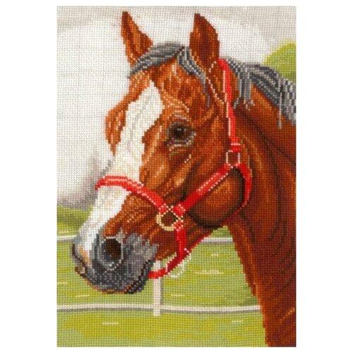 Набор для вышивания Сделай своими руками ССР.Г-05 Горячий конь 18х26 см
