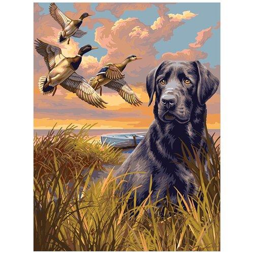 Купить Картина по номерам ФРЕЯ На охоте 40х50 см, Картины по номерам и контурам
