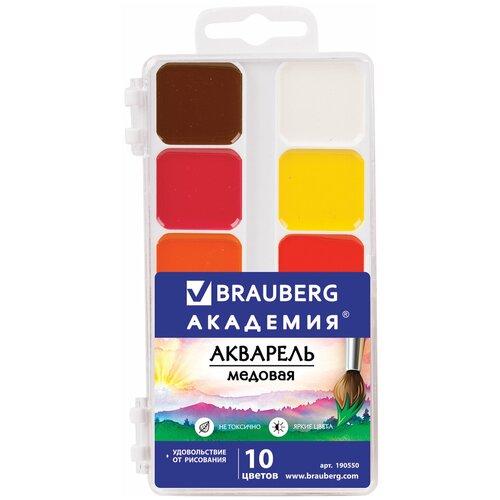 Краски акварельные BRAUBERG академия, 10 цветов, медовые, квадратные кюветы, пластиковый пенал, 190550 академия групп акварельные медовые краски трансформеры 12 цветов