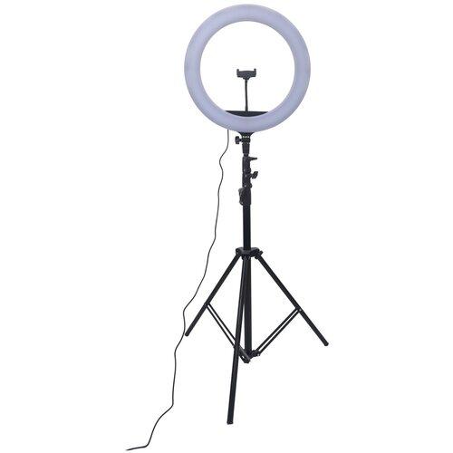 Фото - Светодиодный осветитель Raylab RL-0518 Kit кольцевой софтбокс raylab rpf sb1014 s silver