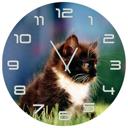 SvS Настенные часы SvS 3501847 Черно-белый котенок