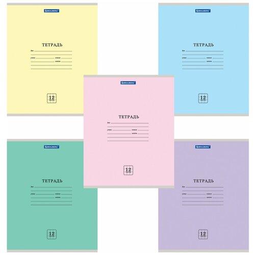 Купить Тетрадь 12 л. BRAUBERG ЭКО , клетка, обложка плотная мелованная бумага, ассорти (5 видов), 105670, Тетради
