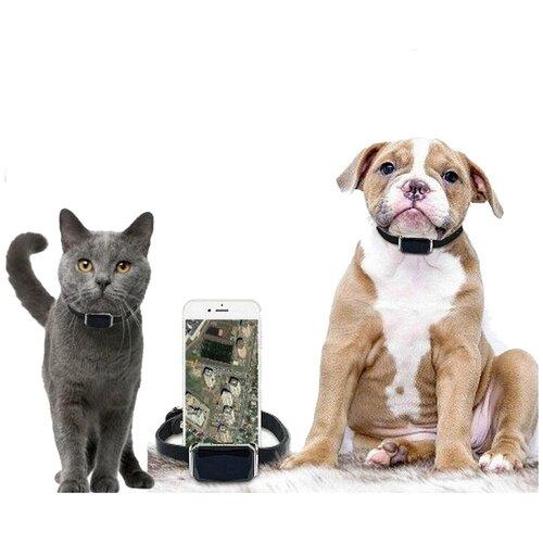 GPS трекер для Собак и Кошек (Котов) с ошейником Hadog-03 / GPS ошейник для собак и кошек (котов) / GPS трекер для животных / GPS ошейник для животных / GPS отслеживание для собак и кошек / подарок кожаный ошейник
