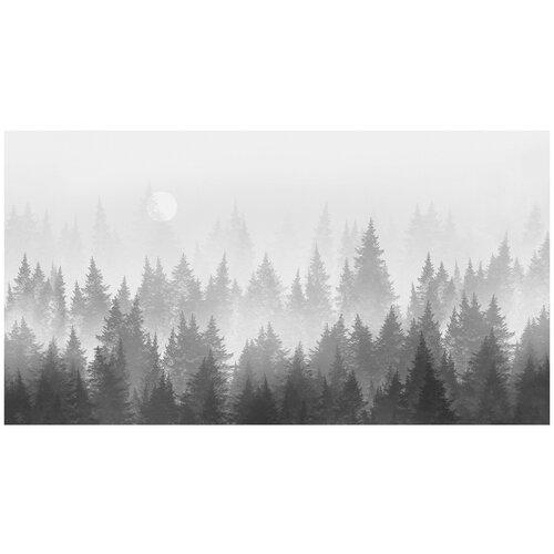 Фотообои Лес в тумане в черно-белых тонах/ Красивые уютные обои на стену в интерьер комнаты/ 3Д расширяющие пространство над кроватью или над столом/ На кухню в спальню детскую зал гостиную прихожую/ размер 500х270см/ Флизелиновые