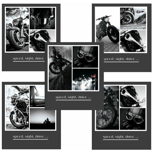 Купить Тетрадь А5, 48 л., пифагор, клетка, офсет №2 эконом, обложка картон, мотоциклы , 403016, Пифагор, Тетради