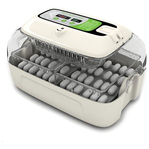 Инкубатор для яиц рептилий Rcom 60 MAX