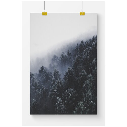 Постер для интерьера Postermarkt Темно-синий лес и туман, 50х70 см, в тубусе