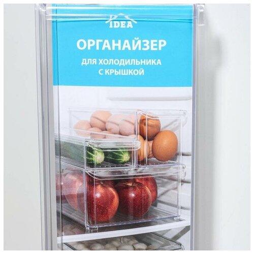 Органайзер для холодильника с крышкой 20*30*10 см. Цвет прозрачный. Лоток для холодильника. Контейнер для холодильника