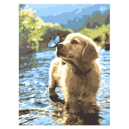 Фото - Кпн-085 Картина по номерам Любопытный щенок картина по номерам lori любопытный щенок 28 5х20 см