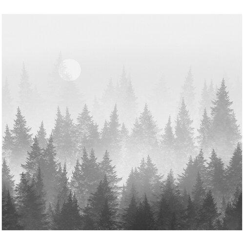 Фотообои Лес в тумане в черно-белых тонах/ Красивые уютные обои на стену в интерьер комнаты/ 3Д расширяющие пространство над кроватью или над столом/ На кухню в спальню детскую зал гостиную прихожую/ размер 300х270см/ Флизелиновые