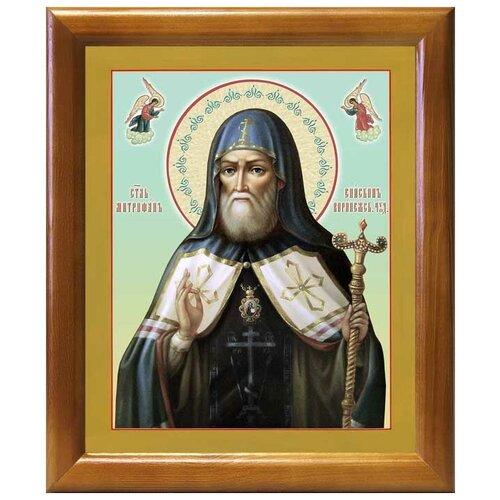 Святитель Митрофан, епископ Воронежский, икона в рамке 17,5*20,5 см