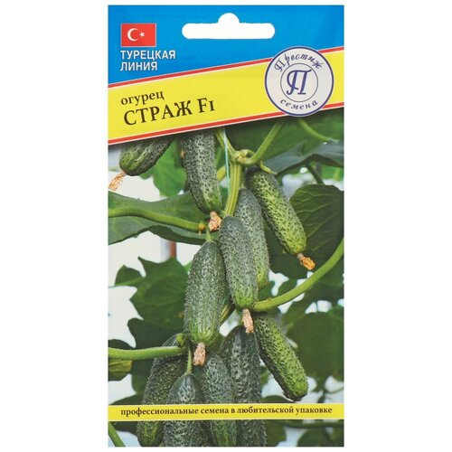 Семена Огурец Страж F1, 5 шт семена огурец сальери f1 8 шт в цветной упаковке седек