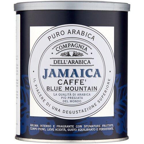 Фото - Кофе молотый Compagnia Dell' Arabica Jamaica Blue Mountain жестяная банка, 250 г кофе молотый compagnia dell arabica brasil santos 125 г