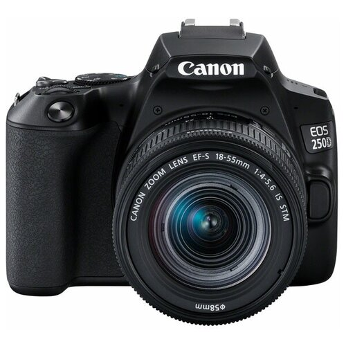 Фото - Фотоаппарат зеркальный Canon EOS 250D Kit EF-S 18-55 IS STM Black фотоаппарат canon eos m200 kit 15 45 is stm черный [3699c010]