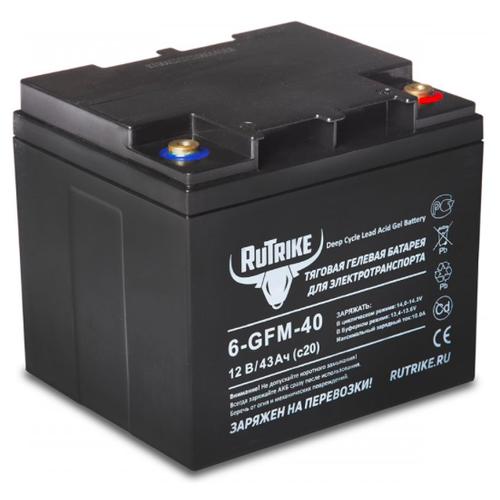 Тяговый гелевый аккумулятор RuTrike 6-GFM-40 (12V43A/H C20)