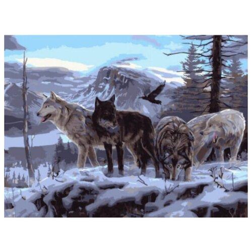 Купить Картина по номерам Цветной «Волчья стая на скале» (холст на подрамнике, 30х40 см), Картины по номерам и контурам