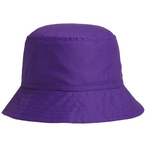 Панама Bizbolka ART-DSGUB04 размер 56-58, фиолетовый
