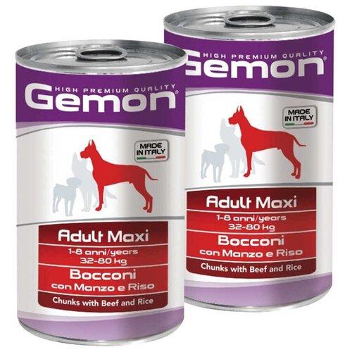 Влажный корм для собак Gemon говядина, с рисом 2 шт. х 1.25 кг (для крупных пород)