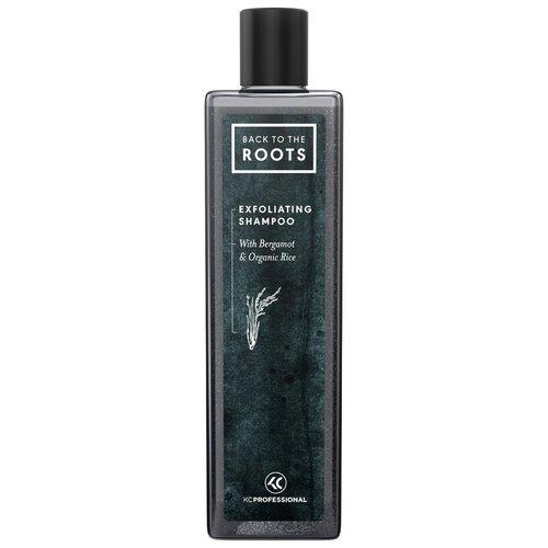 Купить Отшелушивающий и увлажняющий шампунь для волос и кожи головы KC Professional Back to The Roots Exfoliating Shampoo 250 мл, Four Reasons