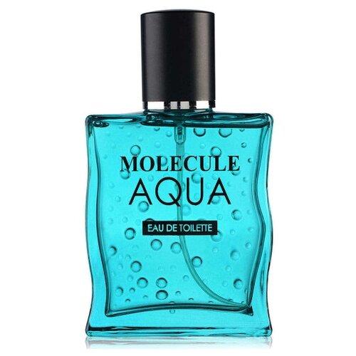 Туалетная вода Парфюмерия XXI века Molecule Aqua pour homme, 100 мл