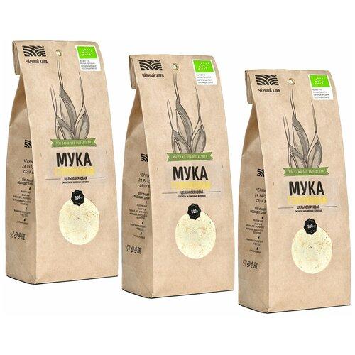 Мука гороховая Чёрный хлеб цельнозерновая органическая, 3 пакета по 500 г