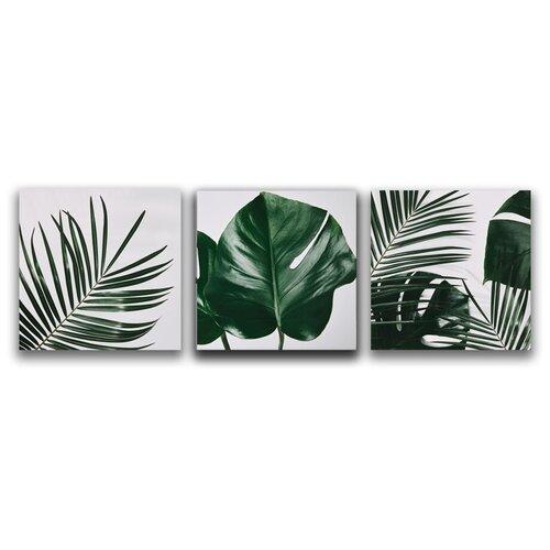 Комплект картин на холсте LOFTime 3 шт 30Х30 тропические растения 2 К-039-3030