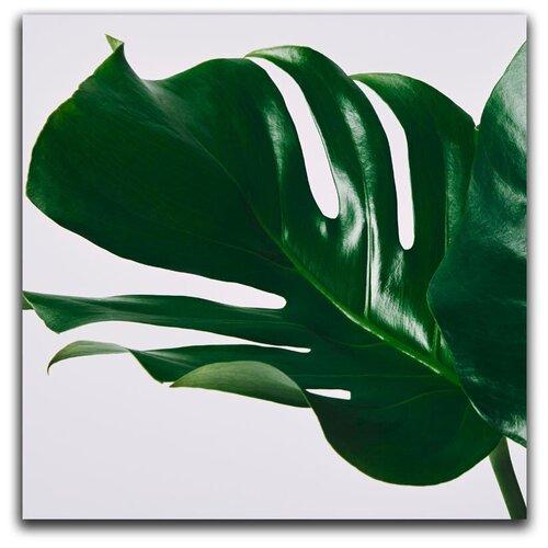 Картина на холсте LOFTime 30х30 тропическое растение 2 К-035-3030