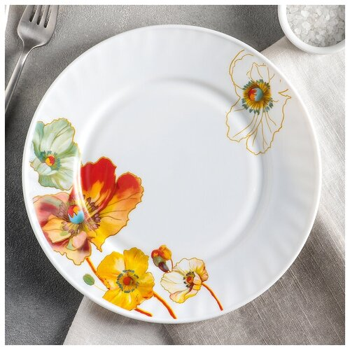 Тарелка обеденная d-23 см