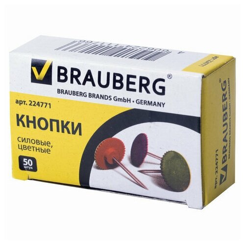 Силовые кнопки BRAUBERG, цветные, круглые, 12 мм, 50 шт., в картонной коробке, 224771