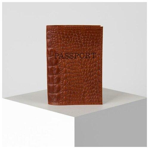 Обложка для паспорта 9,5*0,3*13,5, тисн.конгрев,