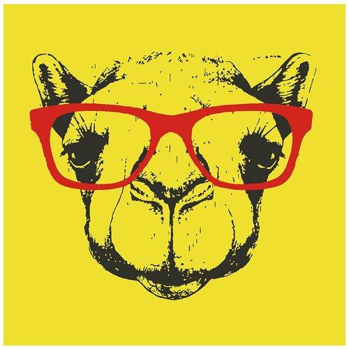 Картина по номерам Верблюд в очках Арт, 60 х 60 см