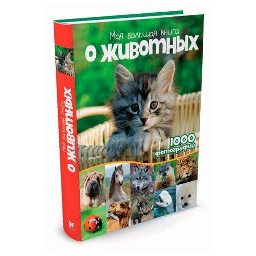 Куйе Н. Моя большая книга о животных machaon книга слово о полку игореве machaon