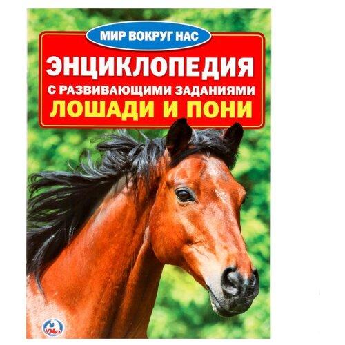 Лошади и пони. Энциклопедия с развивающими заданиямиПознавательная литература<br>