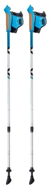 Палка для скандинавской ходьбы 2 шт. ECOS Телескопические Алюминиевые AQD-B015