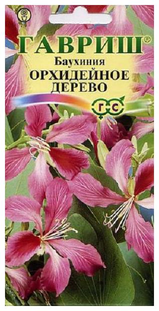 """Баухиния """"Орхидейное дерево"""" (Гавриш), 3 шт."""