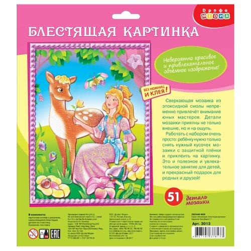 Купить Дрофа-Медиа Набор для создания аппликации Лесная фея (3013), Поделки и аппликации