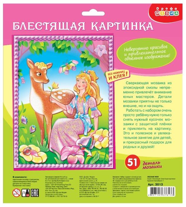 Дрофа-Медиа Набор для создания аппликации Лесная фея (3013)