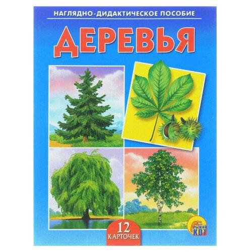 Купить Набор карточек Рыжий кот Деревья 16.5x21.5 см 12 шт., Дидактические карточки