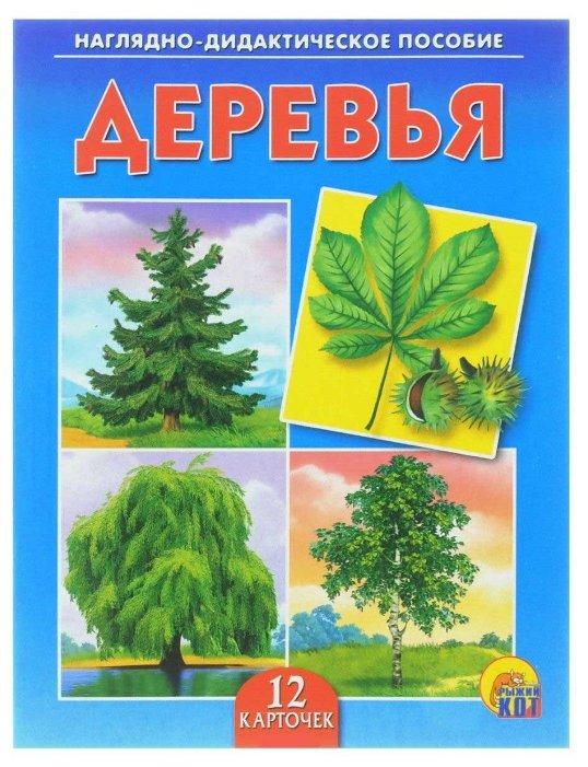 Набор карточек Рыжий кот Деревья 16.5x21.5 см 12 шт.