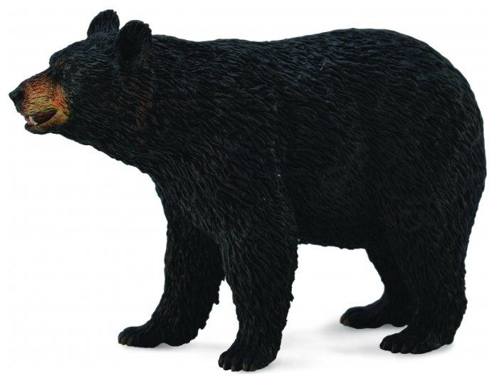 Фигурка Collecta Американский черный медведь 88698