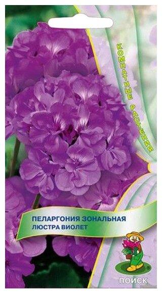 Семена ПОИСК Пеларгония зональная Люстра Виолет 5 шт.