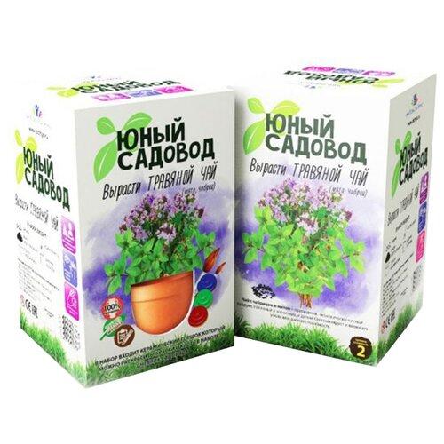 Купить Набор для выращивания Инновации для детей Юный садовод. Вырасти травяной чай, Наборы для исследований