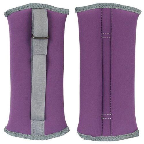 Набор утяжелителей 2 шт. 0.5 кг Indigo SM-260 фиолетовый