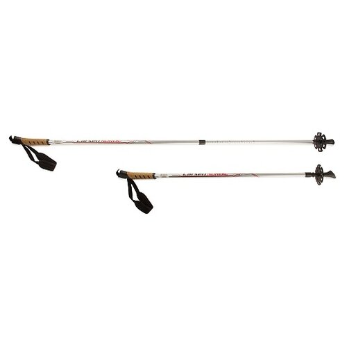 Фото - Палки для скандинавской ходьбы 2 шт. Larsen Nordic 90-140 см серебристый палки для скандинавской ходьбы larsen camping